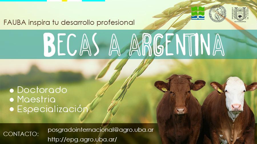 Becas a Argentina